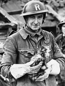 Heroes of World War II worldwartwo.filminspector.com
